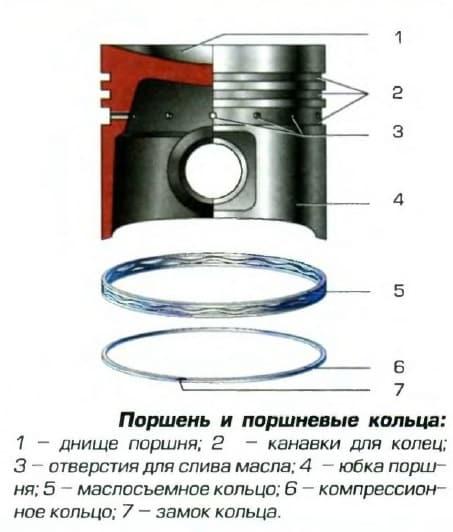 Схема устройства поршня и поршневых колец